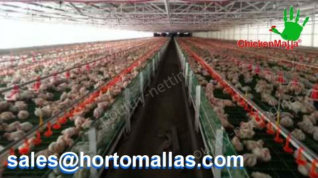 Chicken coop indoor using poultry netting
