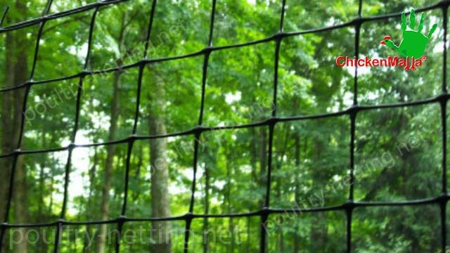 Poultry netting for forest application