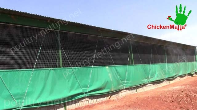 Poultry netting for hen house building