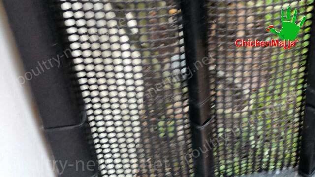 Poultry netting on metal door