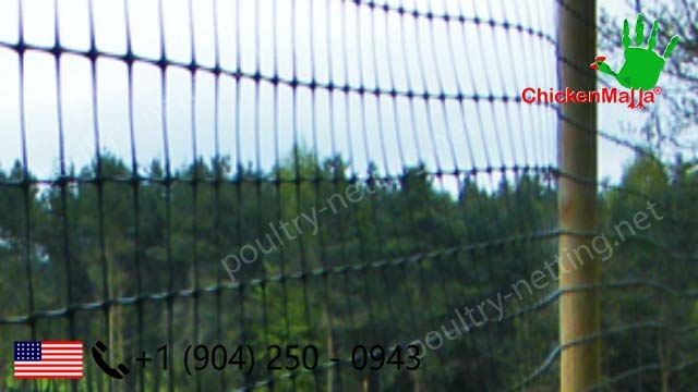 Poultry netting chicken netting on fence for protect crop