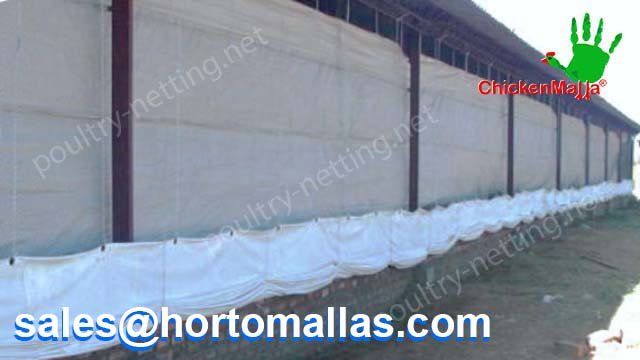 A CHICKENMALLA poultry netting